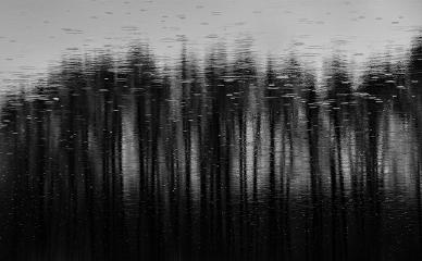blackandwhite rain photography