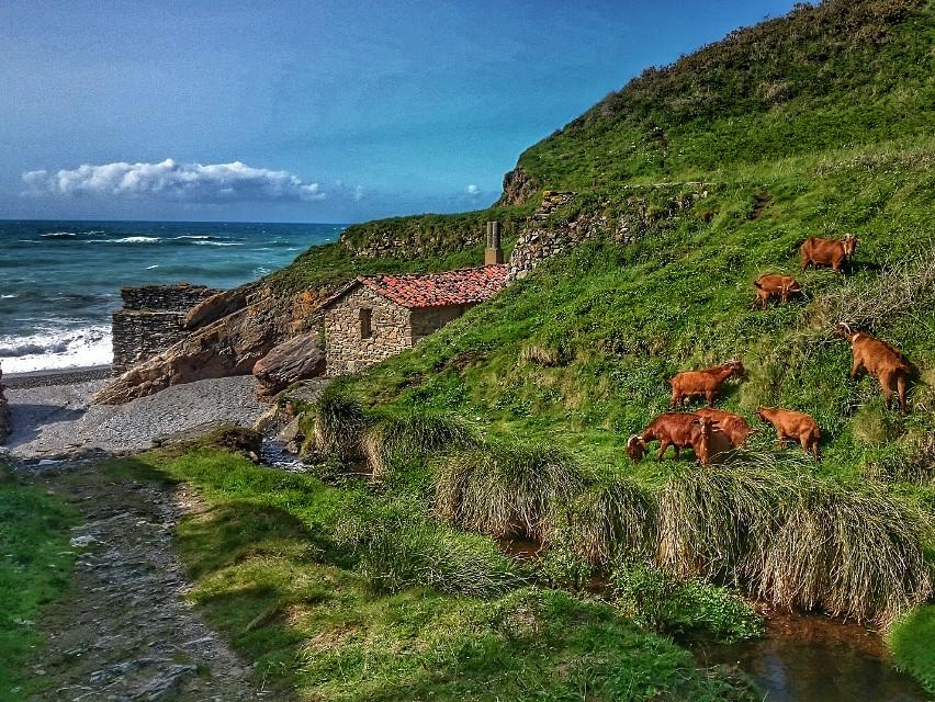 #asturias #FreeToEdit #nature #beach #hdr #photography