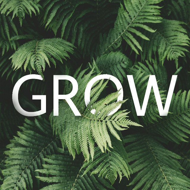 G R O W  Image from @freetoedit #photoquotes #quotesandsayings #words #green #plant #feelings #freetoedit
