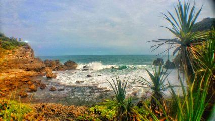 wapshowmethesea beach nature