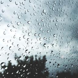 freetoedit rain raindrops window rainyday
