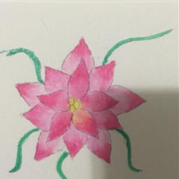 pink flower artflower watercolorpainting watercolorflower