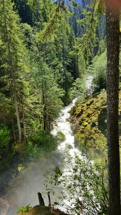 nature spring freetoedit nooksackriver