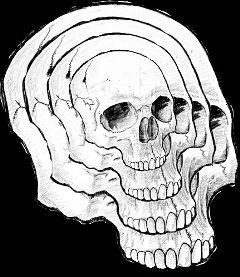 freetoedit skull head blackandwhite