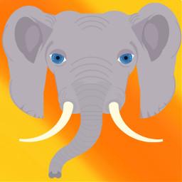 assemblyapp art interesting animals elephant