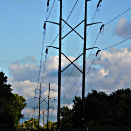 telephonepoles sky clouds blusesky trees