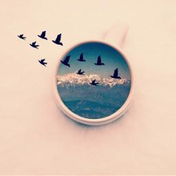 FreeToEdit nature coffee art