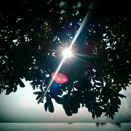 sushine summer color sky