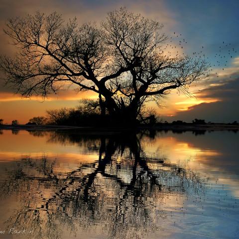 #pcwaterislife,#waterislife,#photography,#nature,#colorful