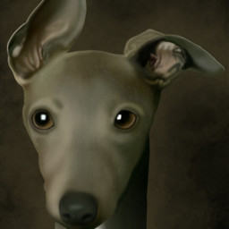 freetoedit drawing digitalpainting digitalartist interesting wdptwotone wdpmagicalcreatures ftedogs