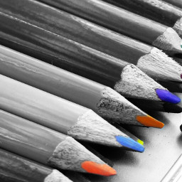 blackandwhite pencil close