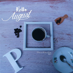 colorful photography flatlays august