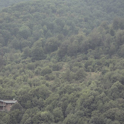 minimalism minimal woods house nature freetoedit