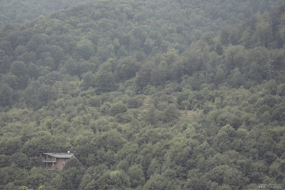 Dilijan minimalism.  #minimalism #minimal #woods #house #nature #dilijan #FreeToEdit