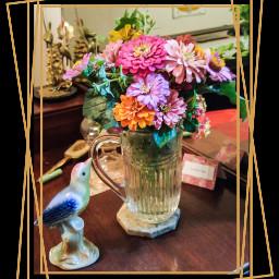 nature zinnia arrangement floweraddict