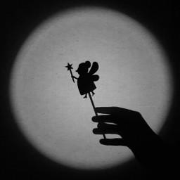 photography blackandwhite retro shadow myshadow