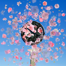 freetoedit clock sky flowerwallpaper floatingflowers