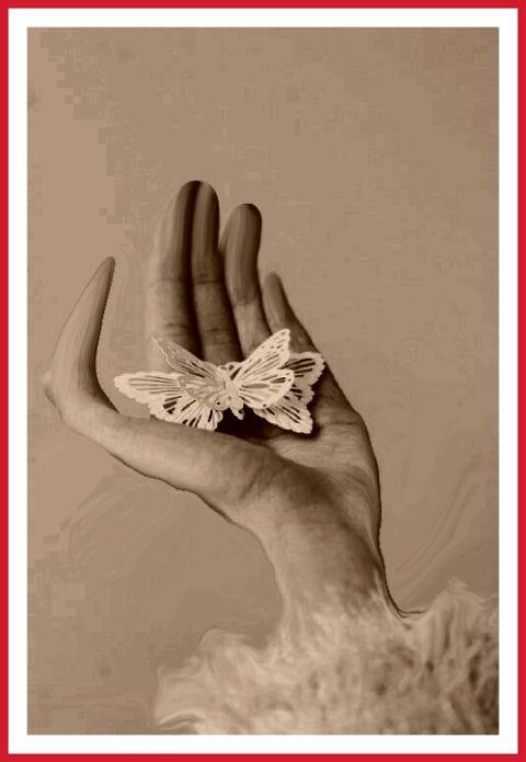 #freetoedit,#hand,#butterfly