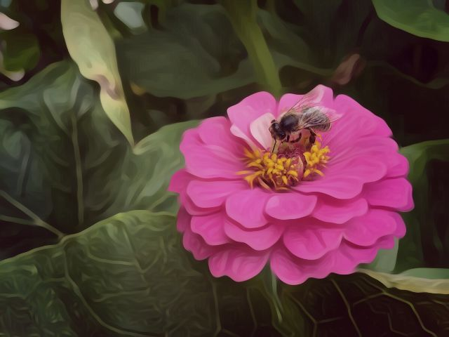 #bee,#flower,#art,#painting,#nature